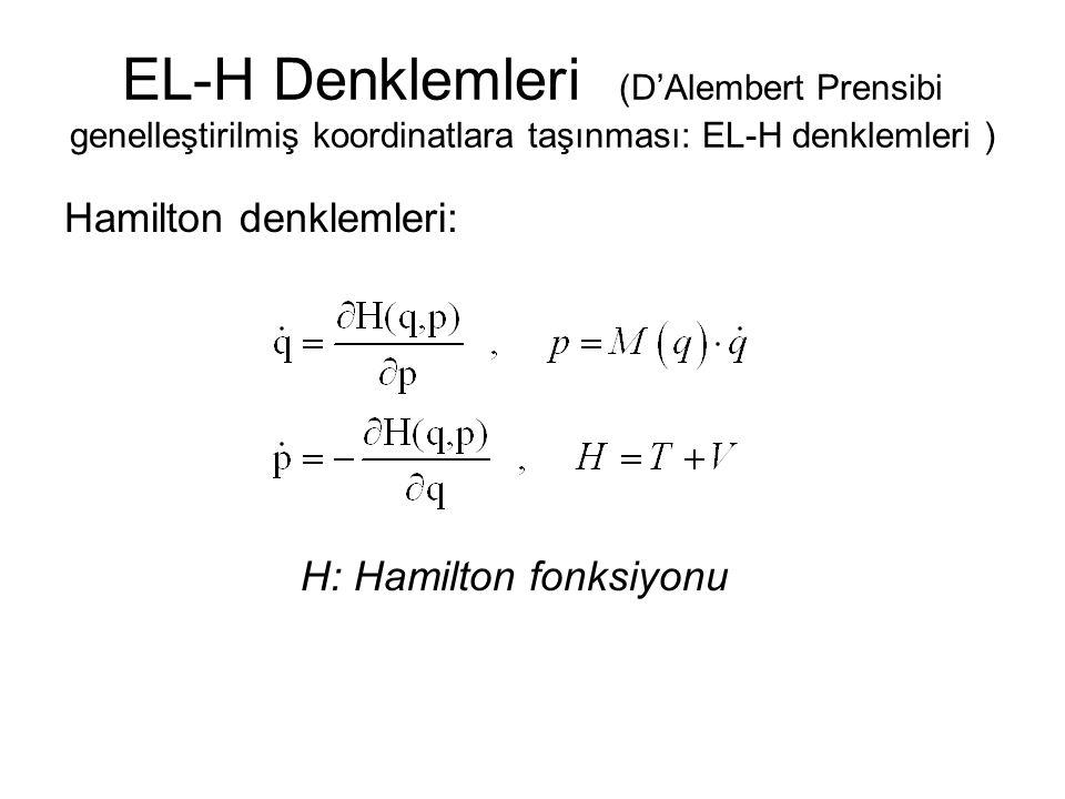 H: Hamilton fonksiyonu