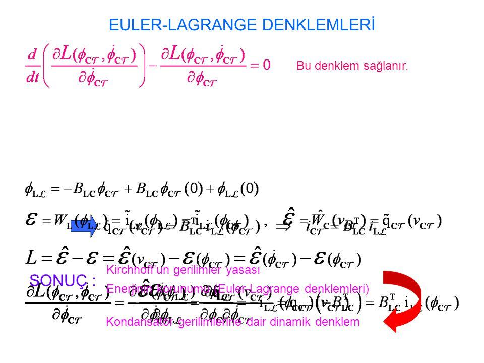EULER-LAGRANGE DENKLEMLERİ