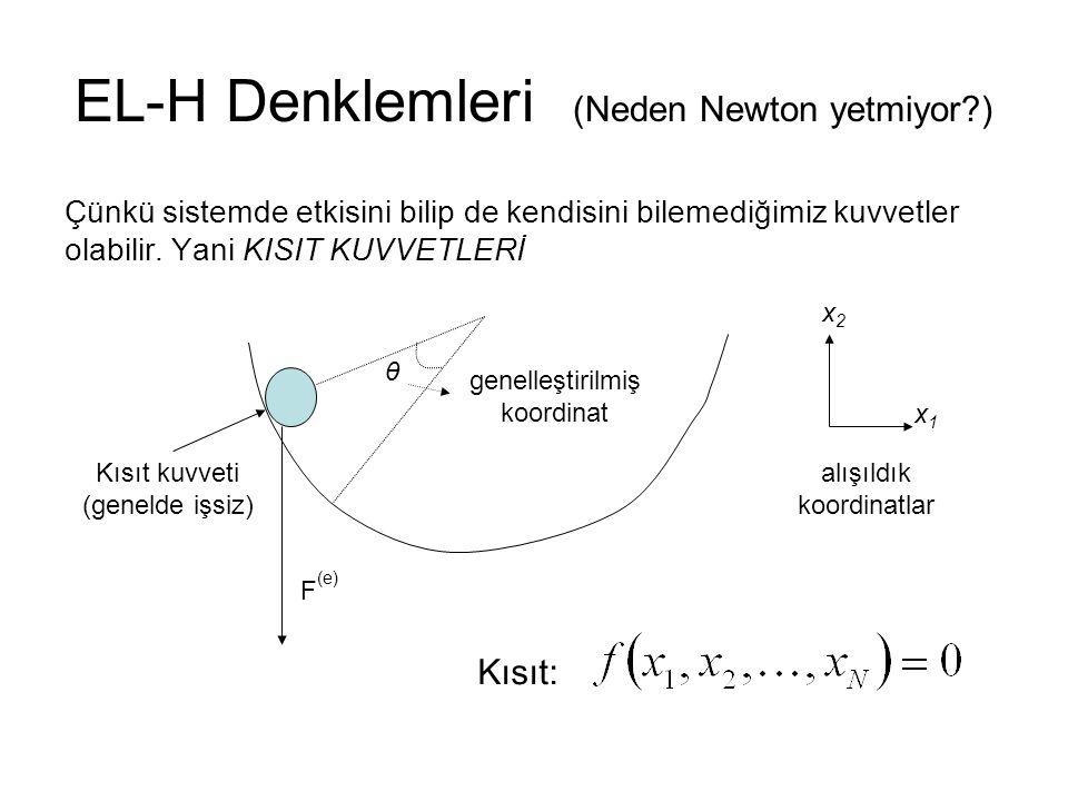 EL-H Denklemleri (Neden Newton yetmiyor )