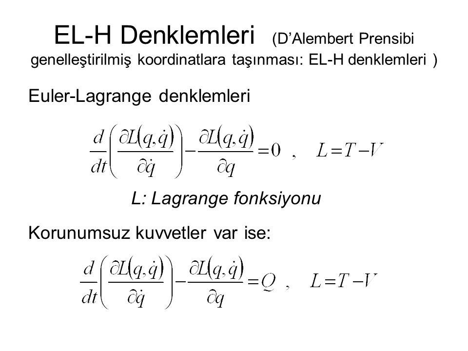 L: Lagrange fonksiyonu