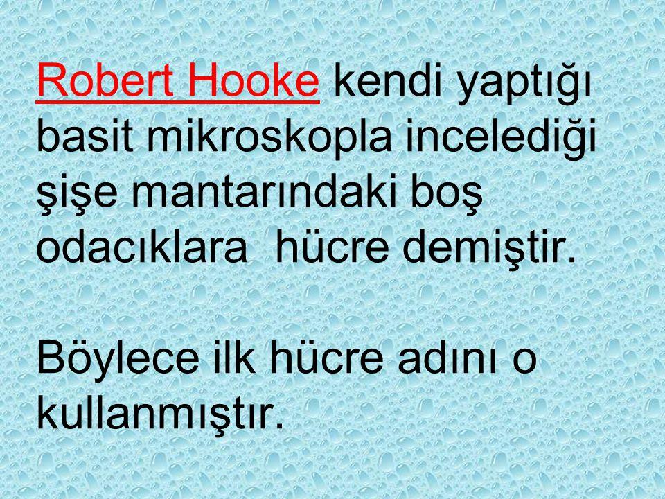 Robert Hooke kendi yaptığı basit mikroskopla incelediği şişe mantarındaki boş odacıklara hücre demiştir.