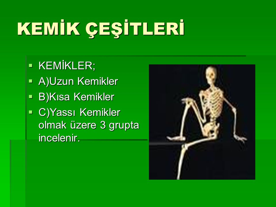 KEMİK ÇEŞİTLERİ KEMİKLER; A)Uzun Kemikler B)Kısa Kemikler