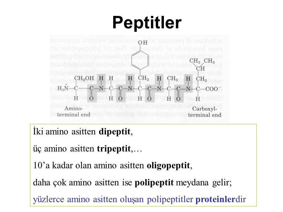 Peptitler İki amino asitten dipeptit, üç amino asitten tripeptit,…