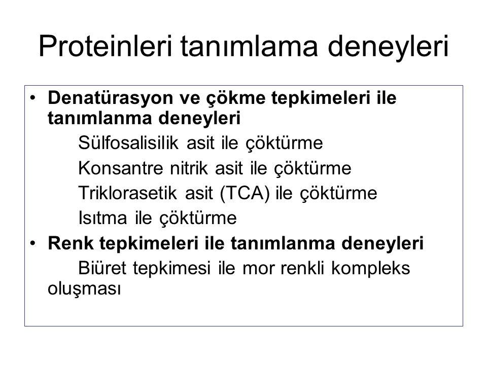 Proteinleri tanımlama deneyleri