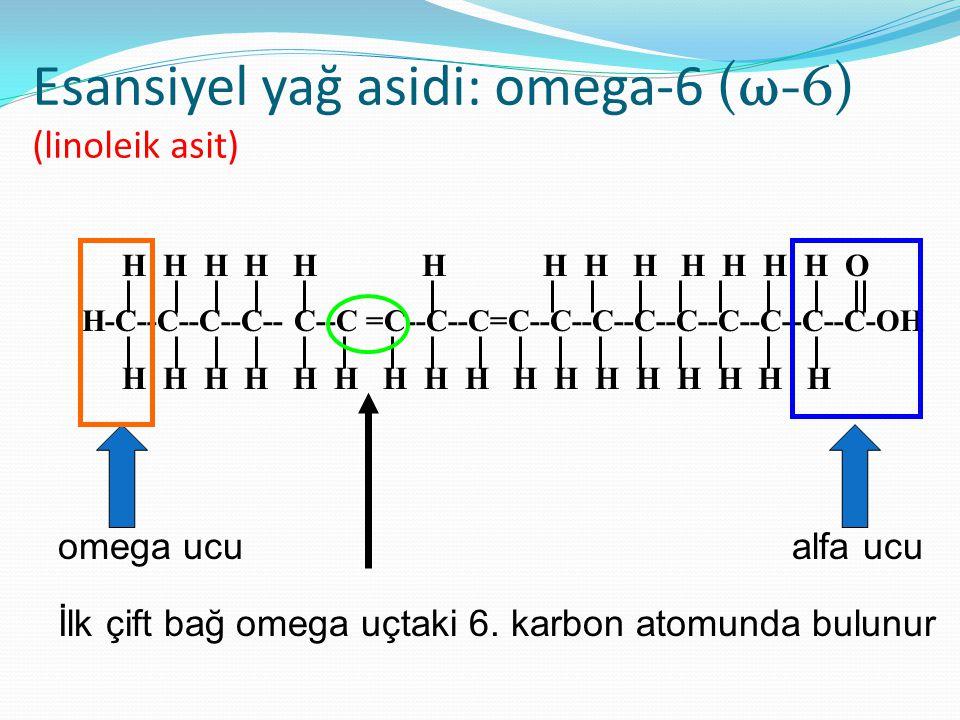 Esansiyel yağ asidi: omega-6 (ω-6) (linoleik asit)