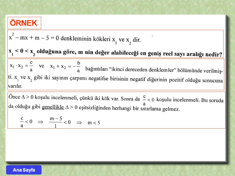 ÖRNEK Ana Sayfa