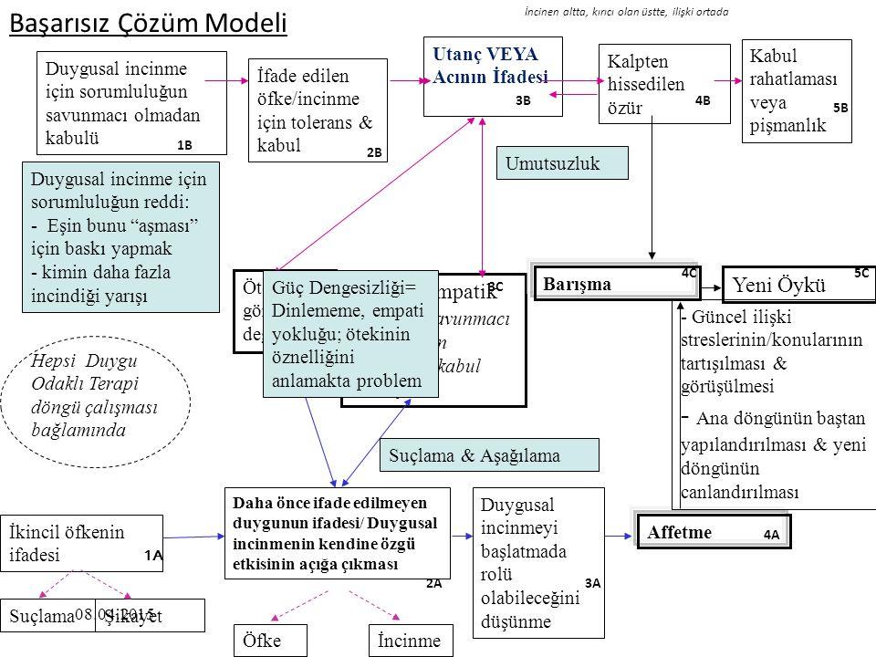 Başarısız Çözüm Modeli