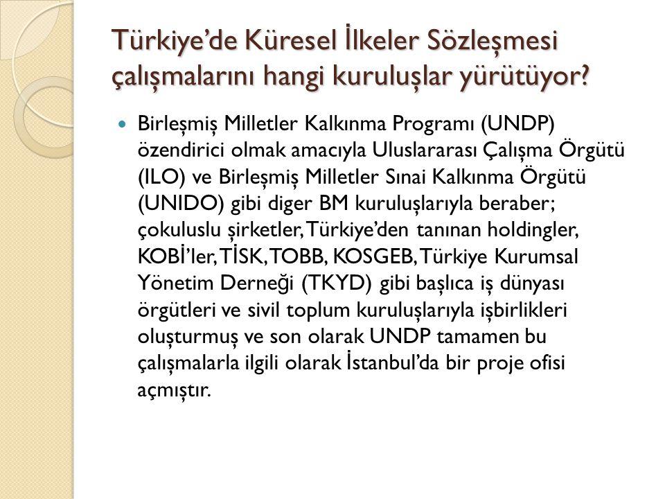 Türkiye'de Küresel İlkeler Sözleşmesi çalışmalarını hangi kuruluşlar yürütüyor