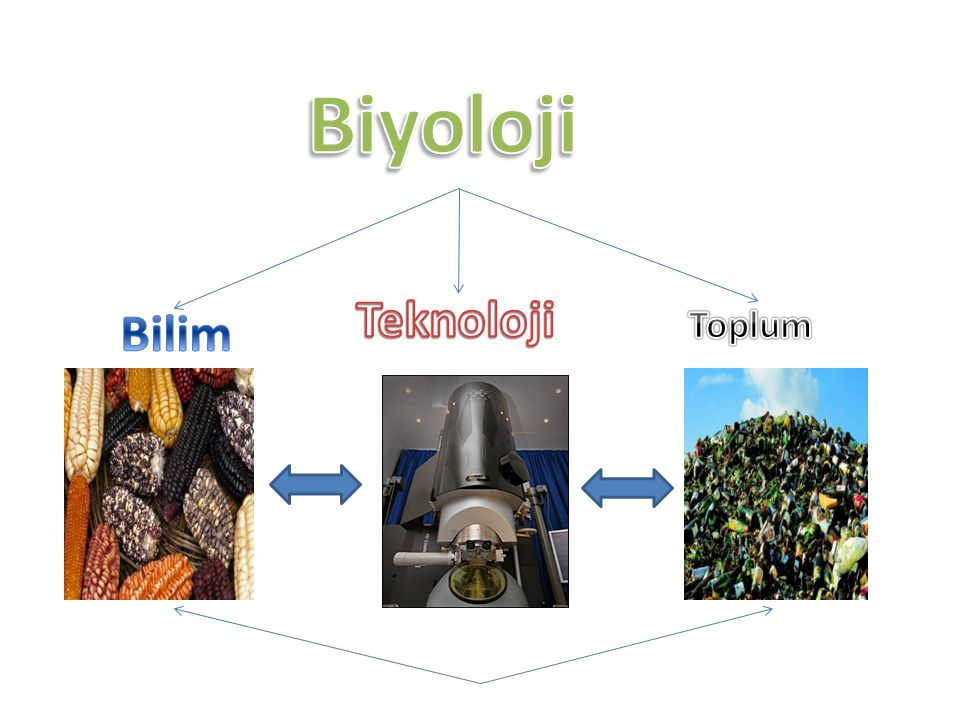 Biyoloji Teknoloji Bilim Toplum