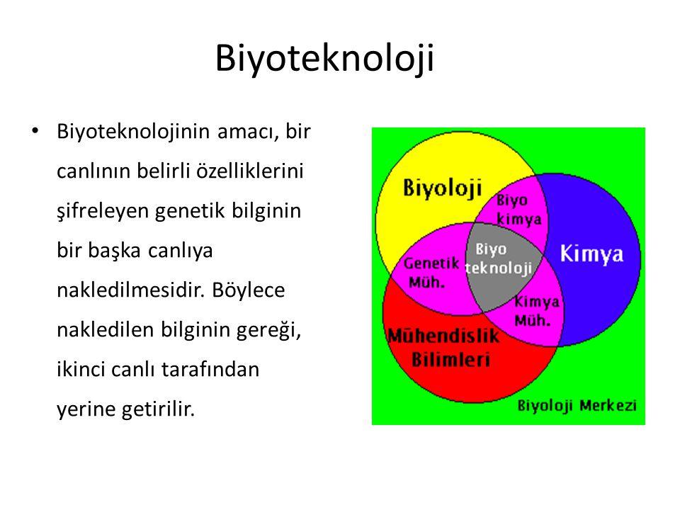 Biyoteknoloji
