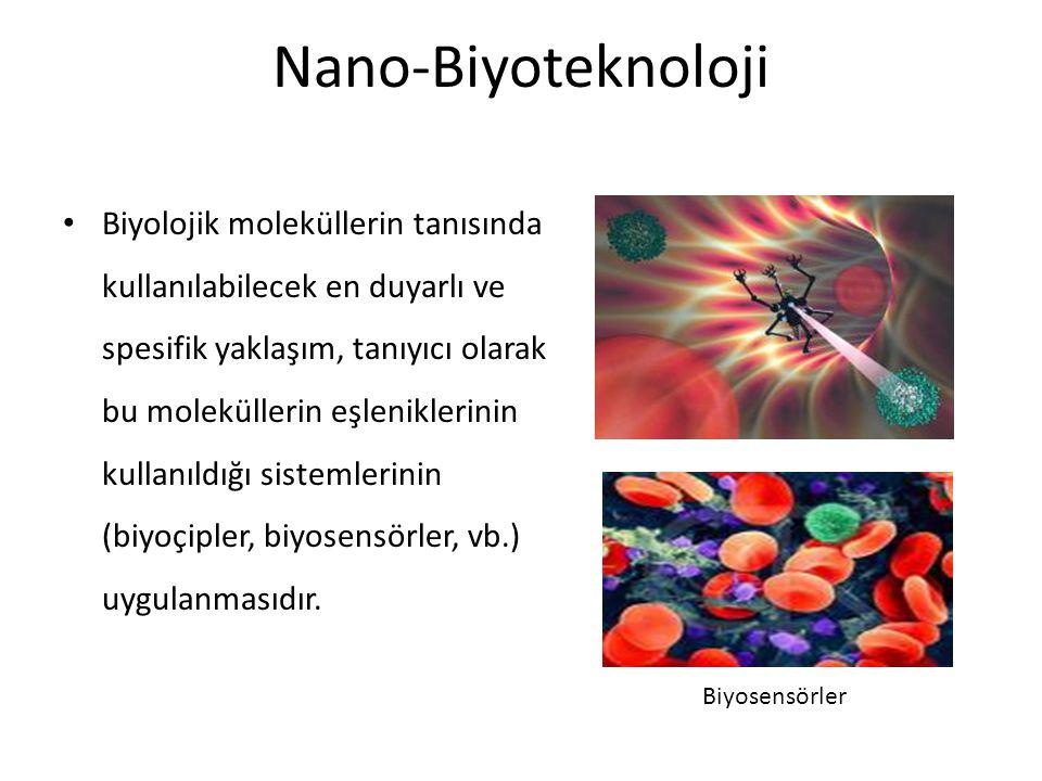 Nano-Biyoteknoloji