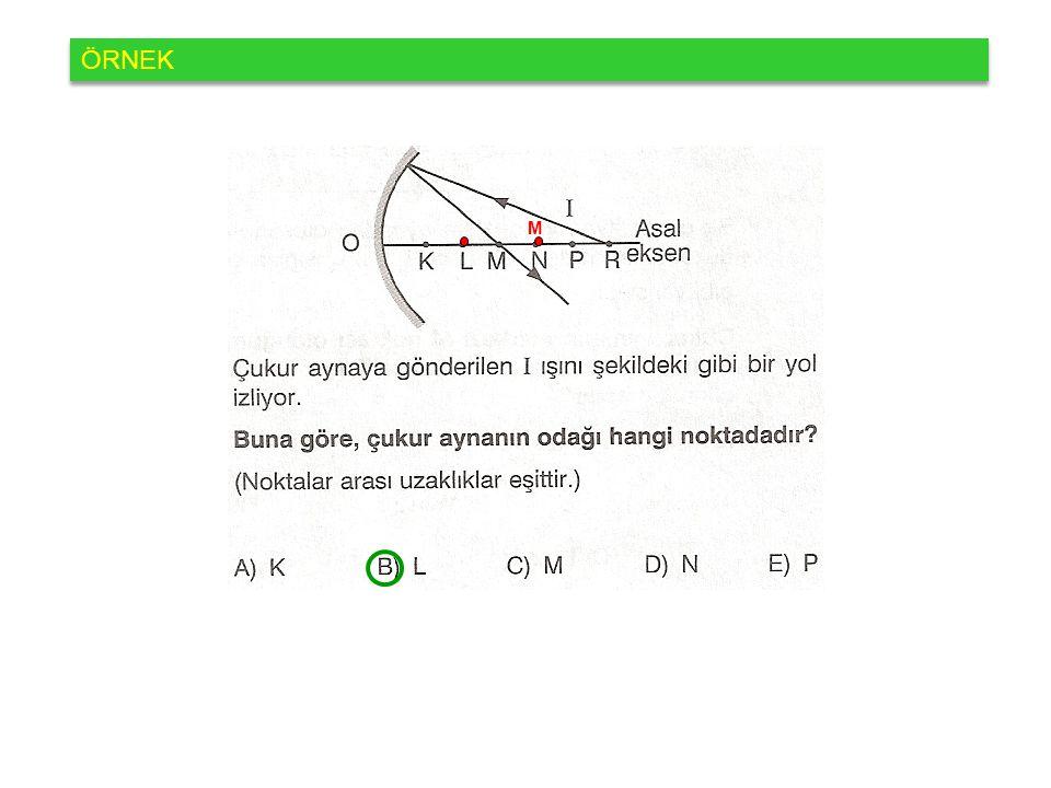 ÖRNEK M