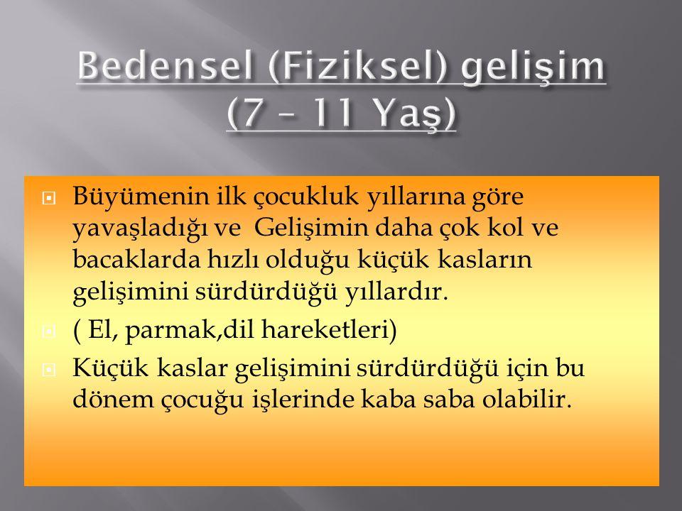 Bedensel (Fiziksel) gelişim (7 – 11 Yaş)