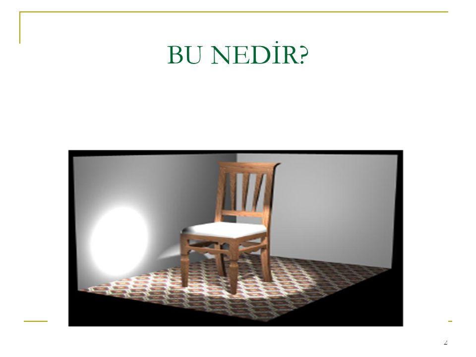 BU NEDİR 2