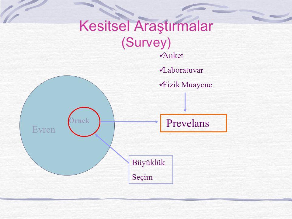 Kesitsel Araştırmalar (Survey)