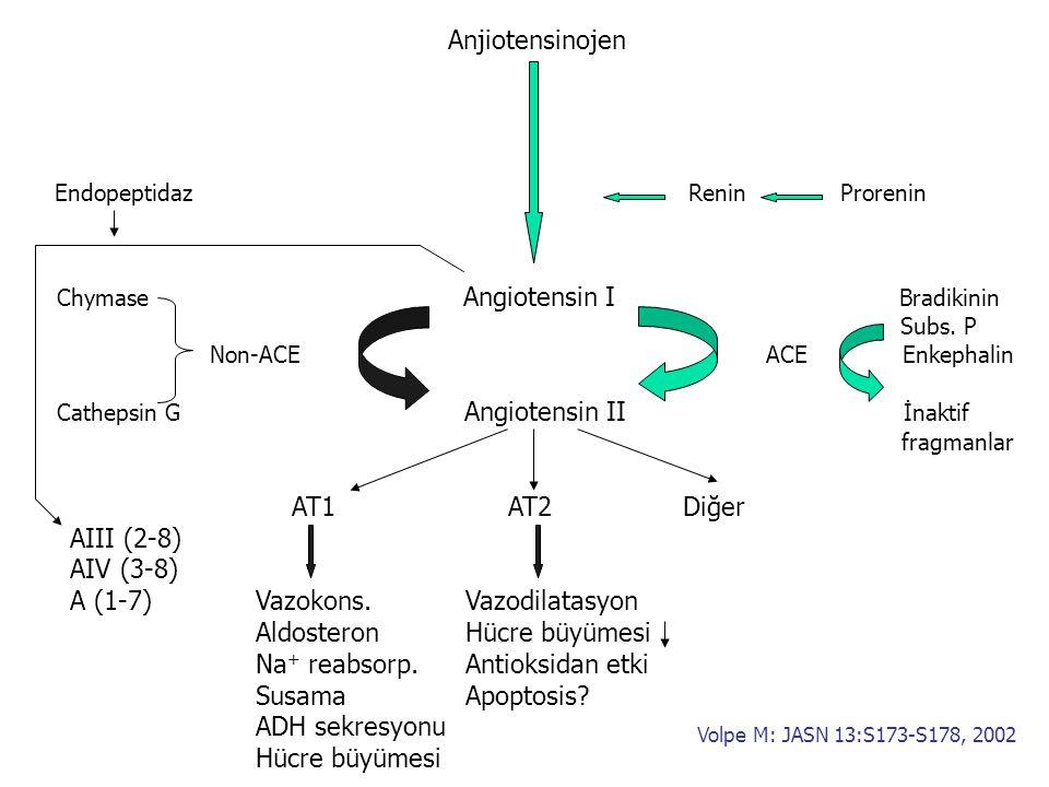 A (1-7) Vazokons. Vazodilatasyon Aldosteron Hücre büyümesi