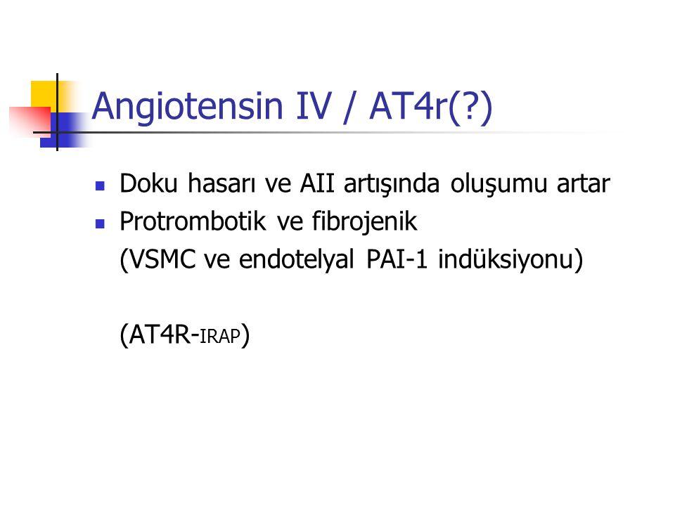 Angiotensin IV / AT4r( ) Doku hasarı ve AII artışında oluşumu artar