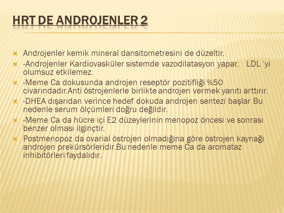 HRT de Androjenler 2 Androjenler kemik mineral dansitometresini de düzeltir.