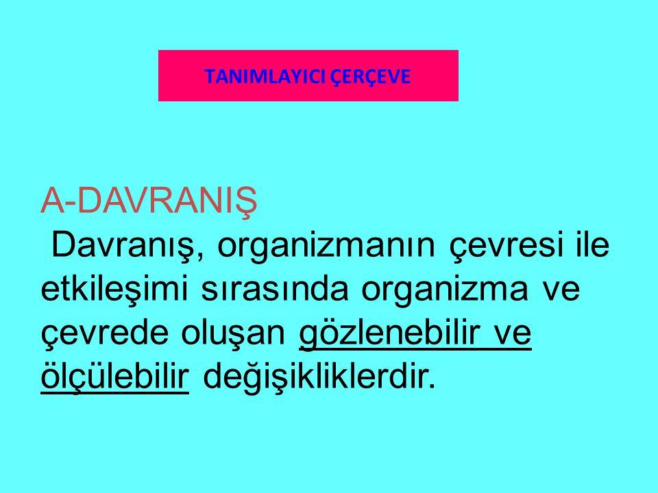 TANIMLAYICI ÇERÇEVE A-DAVRANIŞ.