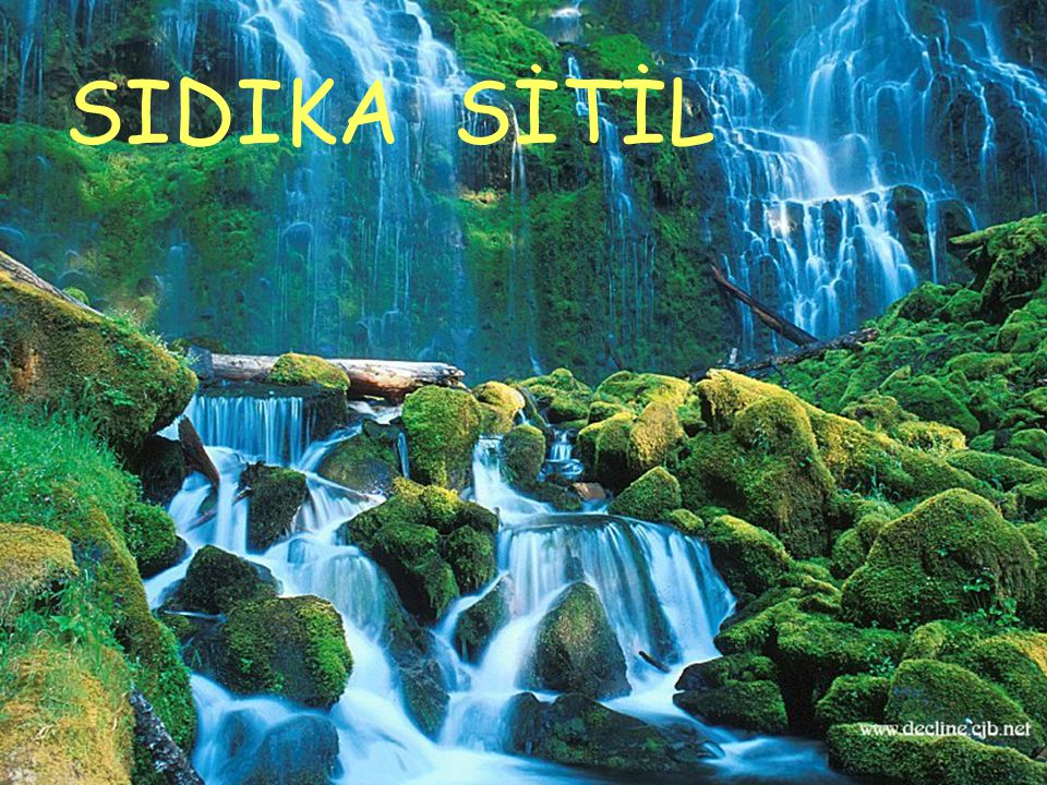 SIDIKA SİTİL