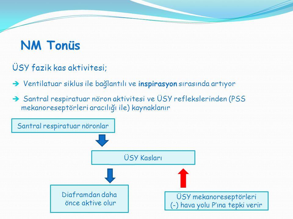 NM Tonüs ÜSY fazik kas aktivitesi;