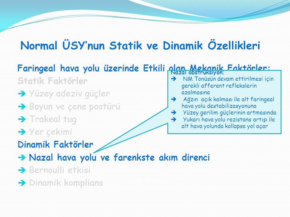 Normal ÜSY'nun Statik ve Dinamik Özellikleri