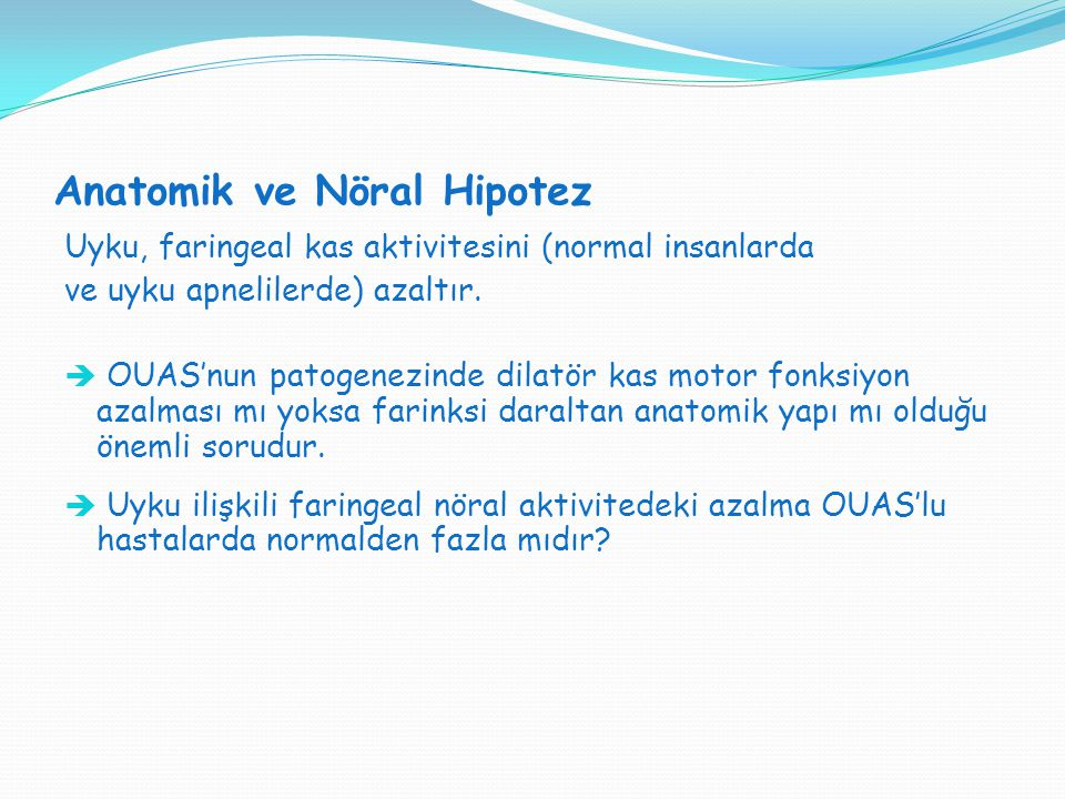 Anatomik ve Nöral Hipotez