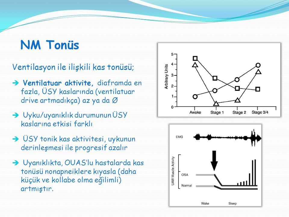 NM Tonüs Ventilasyon ile ilişkili kas tonüsü;