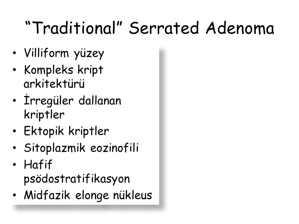 Traditional Serrated Adenoma
