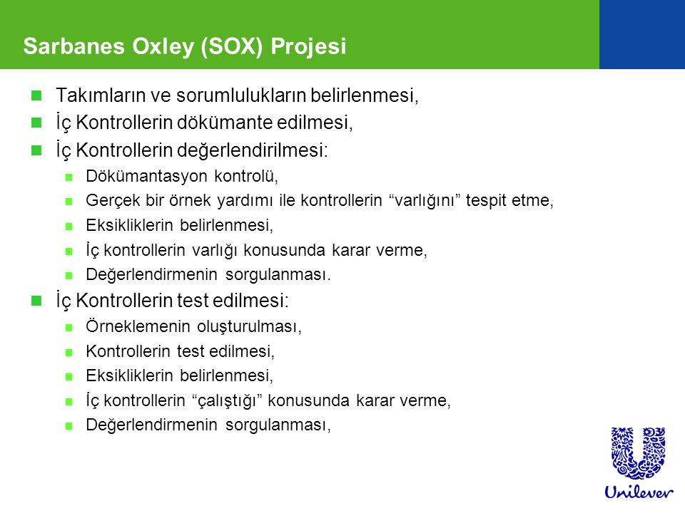 Sarbanes Oxley (SOX) Projesi