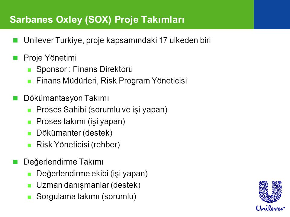 Sarbanes Oxley (SOX) Proje Takımları