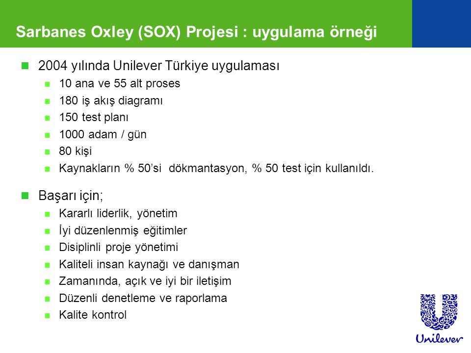 Sarbanes Oxley (SOX) Projesi : uygulama örneği