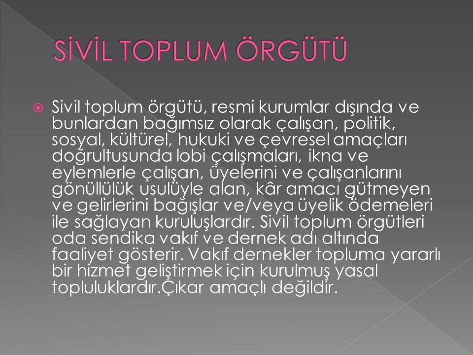 SİVİL TOPLUM ÖRGÜTÜ