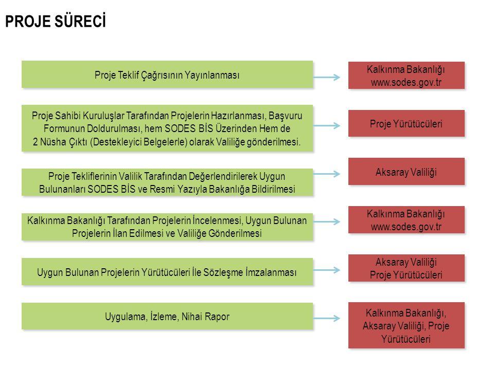 PROJE SÜRECİ Kalkınma Bakanlığı Proje Teklif Çağrısının Yayınlanması