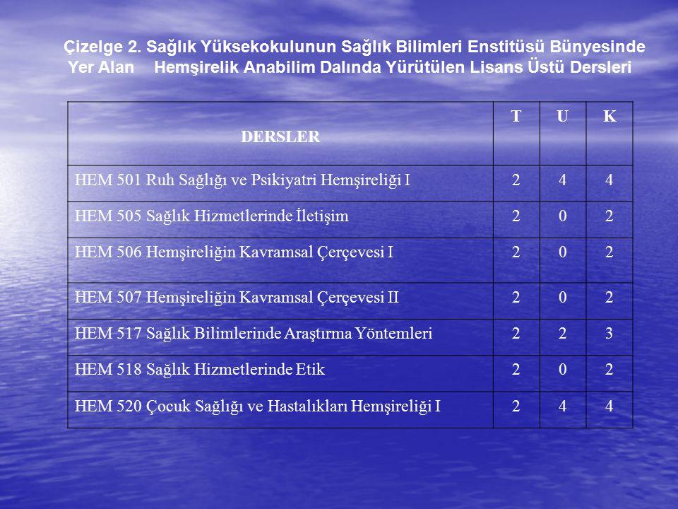 Çizelge 2. Sağlık Yüksekokulunun Sağlık Bilimleri Enstitüsü Bünyesinde
