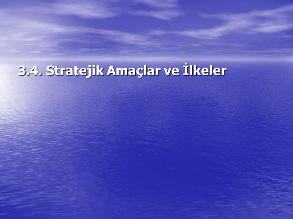 3.4. Stratejik Amaçlar ve İlkeler