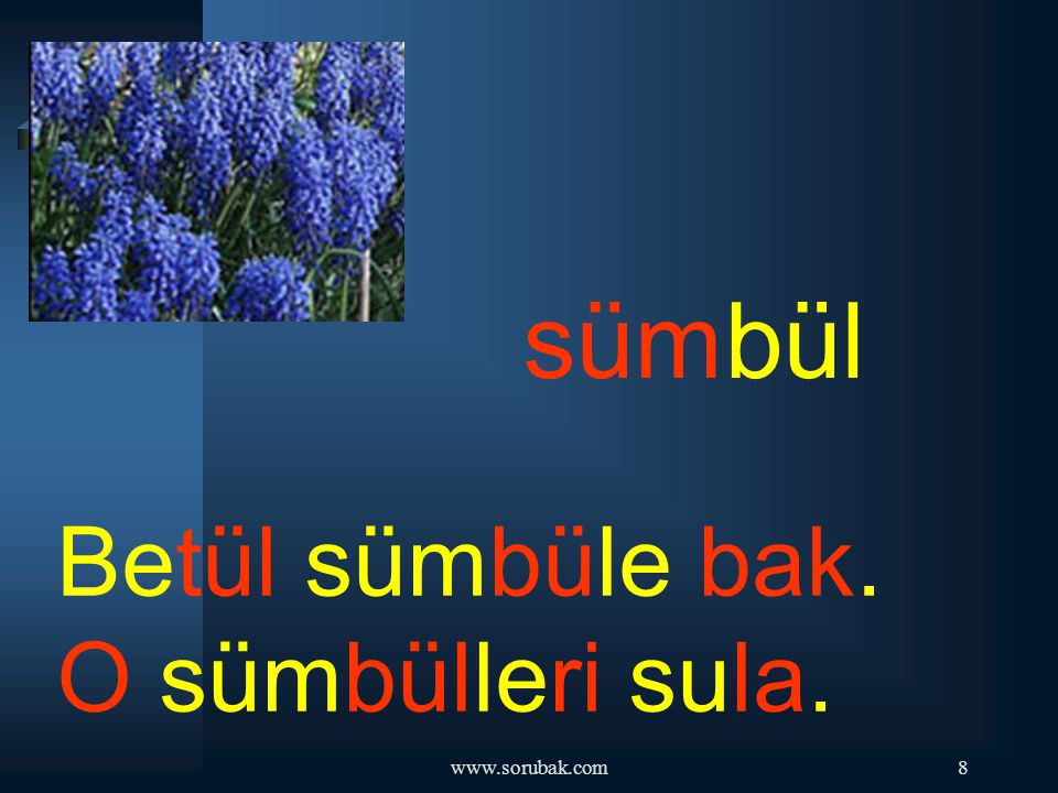 sümbül Betül sümbüle bak. O sümbülleri sula. www.sorubak.com