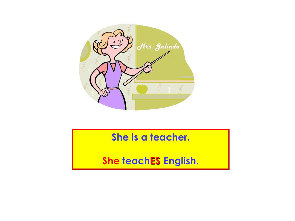 She is a teacher. She teachES English.