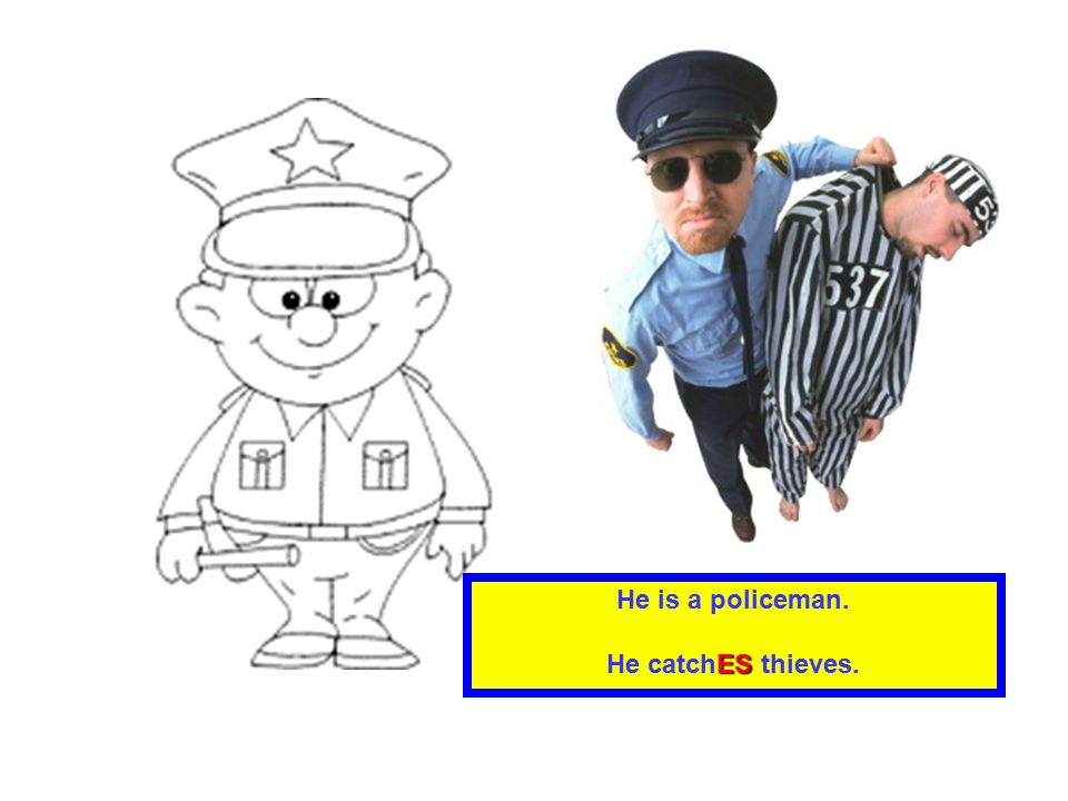 He is a policeman. He catchES thieves.