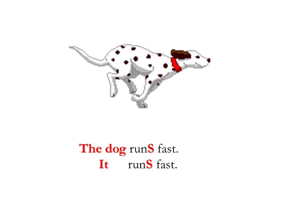 The dog runS fast. It runS fast.
