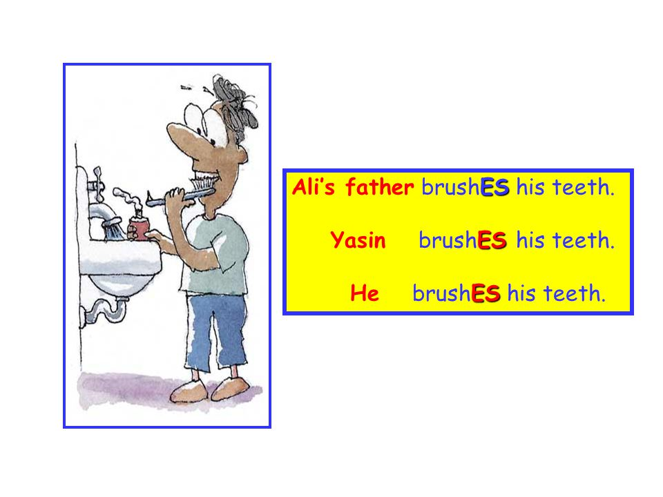 Ali's father brushES his teeth.