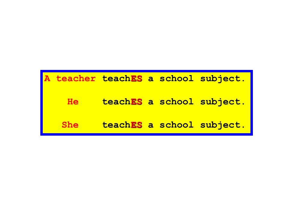 A teacher teachES a school subject.
