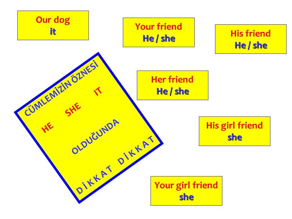 Our dog it. Your friend. He / she. His friend. He / she. Her friend. He / she. CÜMLEMİZİN ÖZNESİ.