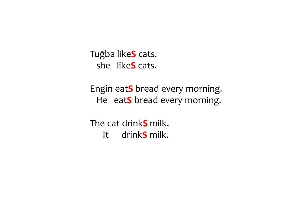 Tuğba likeS cats. she likeS cats. Engin eatS bread every morning. He eatS bread every morning.