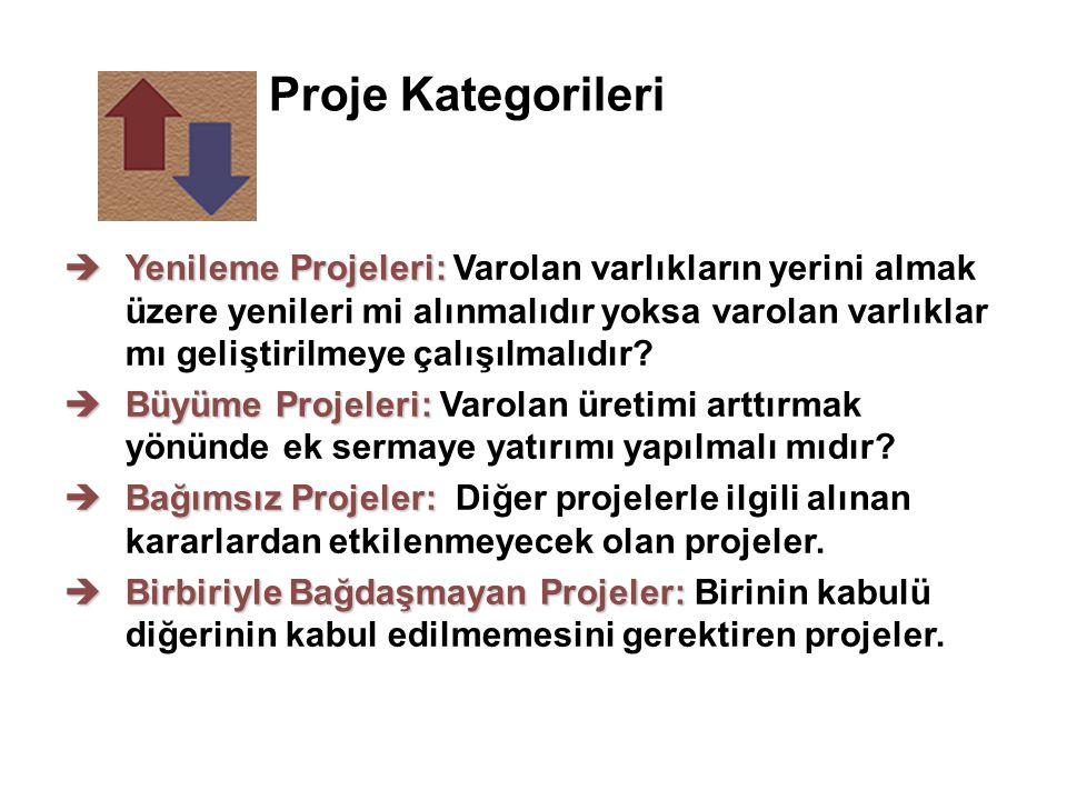 Proje Kategorileri