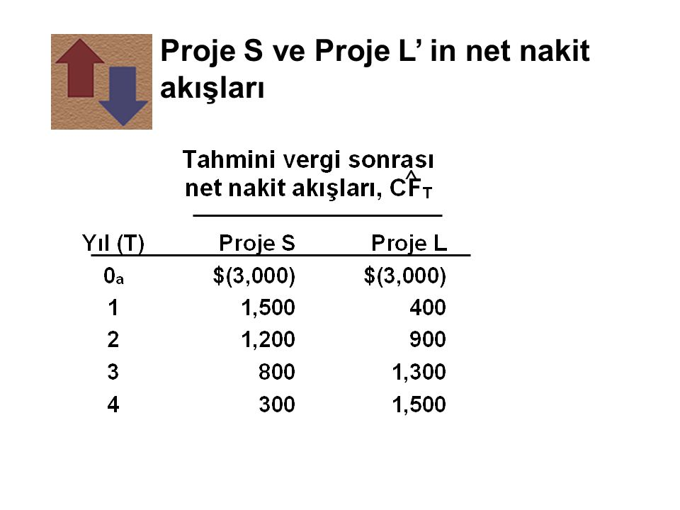 Proje S ve Proje L' in net nakit akışları
