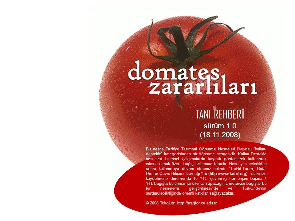domates zararlıları TANI REHBERİ sürüm 1.0 (18.11.2008)
