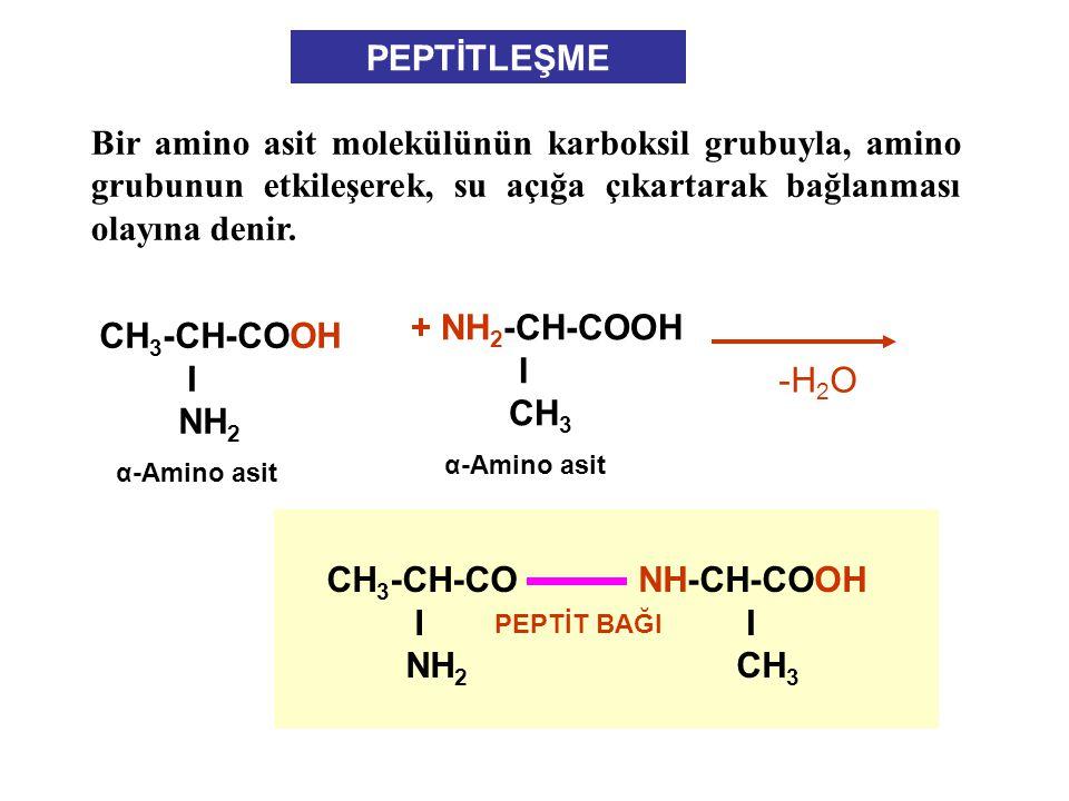 PEPTİTLEŞME Bir amino asit molekülünün karboksil grubuyla, amino grubunun etkileşerek, su açığa çıkartarak bağlanması olayına denir.