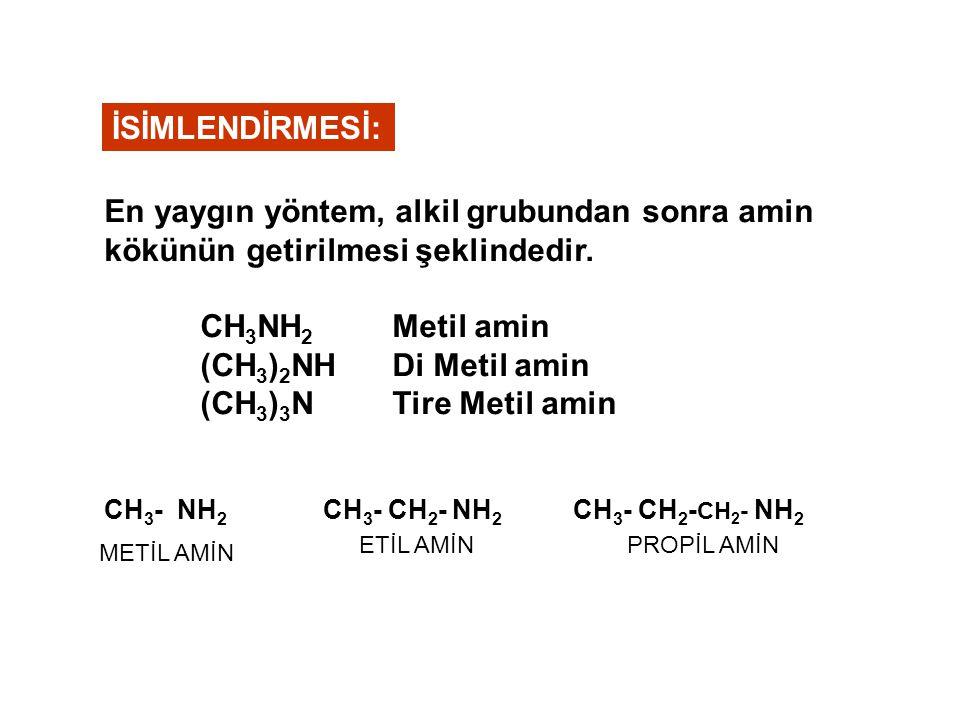 İSİMLENDİRMESİ: En yaygın yöntem, alkil grubundan sonra amin kökünün getirilmesi şeklindedir. CH3NH2 Metil amin.