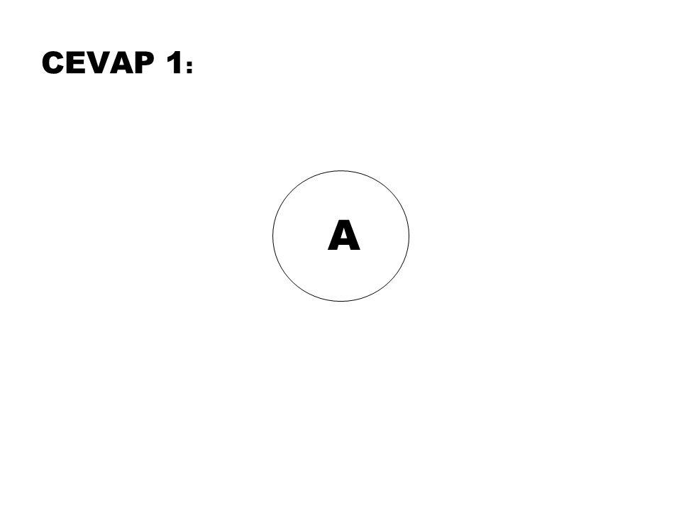 CEVAP 1: A